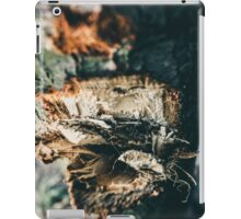 close detail of a cracked tree iPad Case/Skin