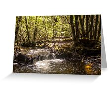 Face in the water Greeting Card
