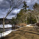 Chocorua Bridge by Monica M. Scanlan