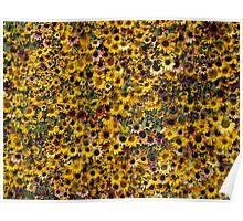 Massed Sunflowers Poster