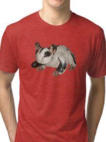 Sugar Glider Tri-blend T-Shirt