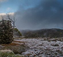 Snow at Windermere by Ron Finkel