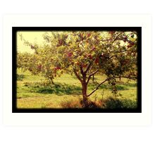 How 'bout them apples? Art Print