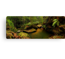 Blue Mountains, New South Wales. Canvas Print