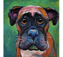 Cute Boxer dog puppy portrait painting by Svetlana Novikova Photographic Print
