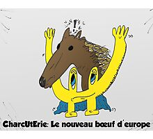 BD scandale charcuterie boeuf europe Photographic Print