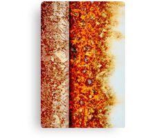 Designer Rust 2 Canvas Print
