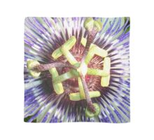 Close Up of The Centre Of a Passiflora Flower Scarf