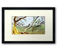 The Martian Cylinder on the Common   Framed Print