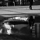 Reflection by Kutay Photography