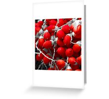 Manila Palm Red Greeting Card