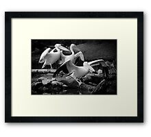 Tightrope Walkers Framed Print