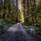 Sometimes We Find The End by Charles & Patricia   Harkins ~ Picture Oregon