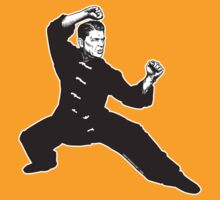 Kung Fu Reagan by LibertyManiacs