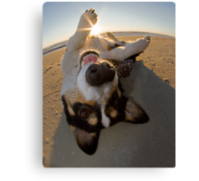 Fun with the Sun Canvas Print