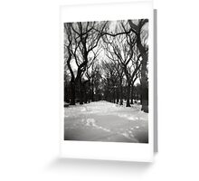 Trees in the Park Greeting Card