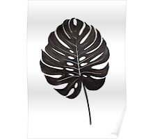 Monstera Leaf Poster