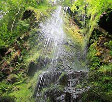 Mallyan Spout Waterfall by Lynne69
