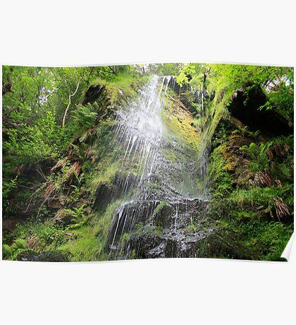 Mallyan Spout Waterfall Poster
