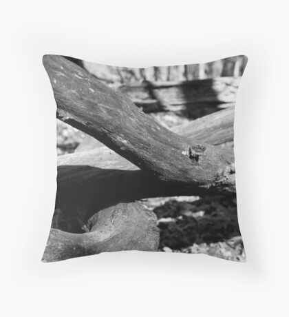 Rotten Logs Throw Pillow
