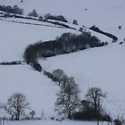 Winter Wonderland by Lynne69