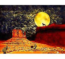 Desolate Desert Photographic Print