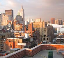New York City Roof top  by Danny  Daly