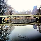 Bow Bridge Central Park in reflection by Danny  Daly