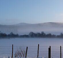 Snowy Fenceposts by Jennifer J Watson