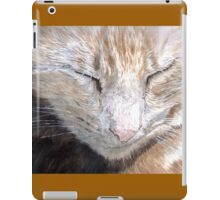 Purrsia the Cat iPad Case/Skin