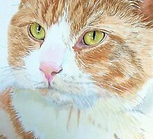 Snickers the Cat by Yvonne Carter