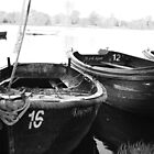 Hever Lake  by RuariFieldPics