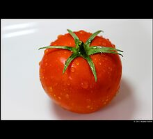 Solanum Lycopersicum - Tomato  by © Sophie W. Smith