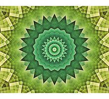 Mandala Green Life Photographic Print