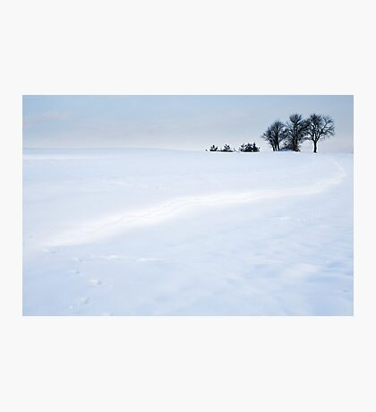Winter Landscapes Photographic Print