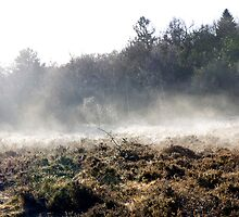 The Frost Melts by mikebov