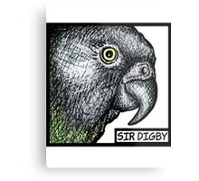 """Sir Digby, 2014"" Metal Print"