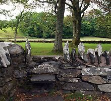 Stone Wall at Temple Wood by kalaryder
