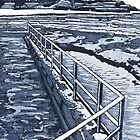 Austinmer Pool by Drawstring