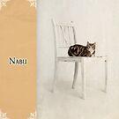 Nabu by Mark Cooper