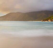Dawn greets Little Waterloo Bay, Wilsons Promontory, Victoria, Australia by Michael Boniwell