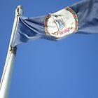 Virginia State Flag by BrowncoatAllie