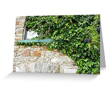 Ivy Clad Window Greeting Card