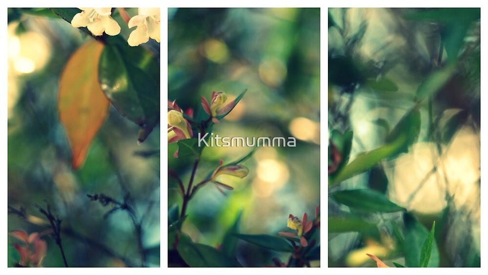 Daydream Believer by Kitsmumma