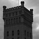 Hoffman Tower by Adam Kuehl