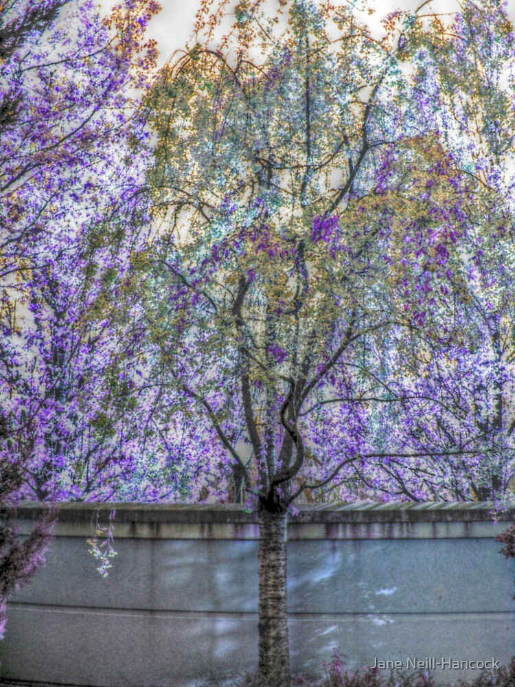 Flowering Tree Among the Lilacs and Wisteria by Jane Neill-Hancock