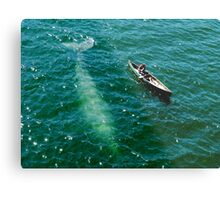 Tale Of Two Flukes Metal Print