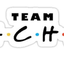Friends - Team Rachel Sticker