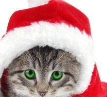phone case Christmas cat Sticker