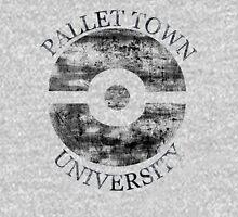 Pallet Town University Unisex T-Shirt